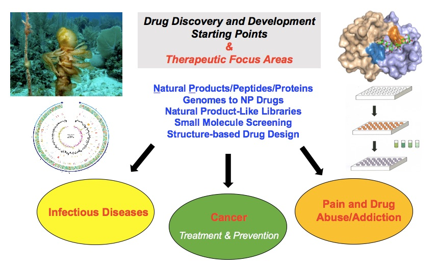 Drug discovery and development starting points