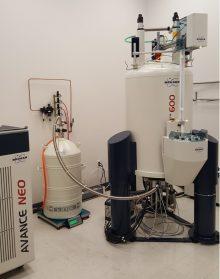 Prodigy NMR