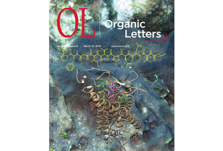 Organic Letters Cover