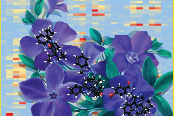 Journal of Medicinal Chemistry cover
